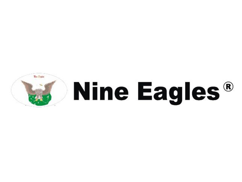 nine-eagles